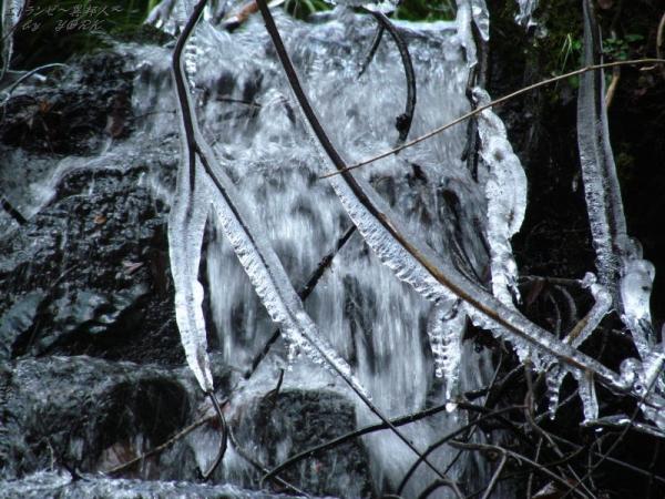 2108氷の芸術作品170212