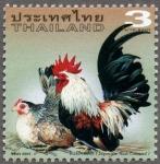 タイ・チャボ(2003)