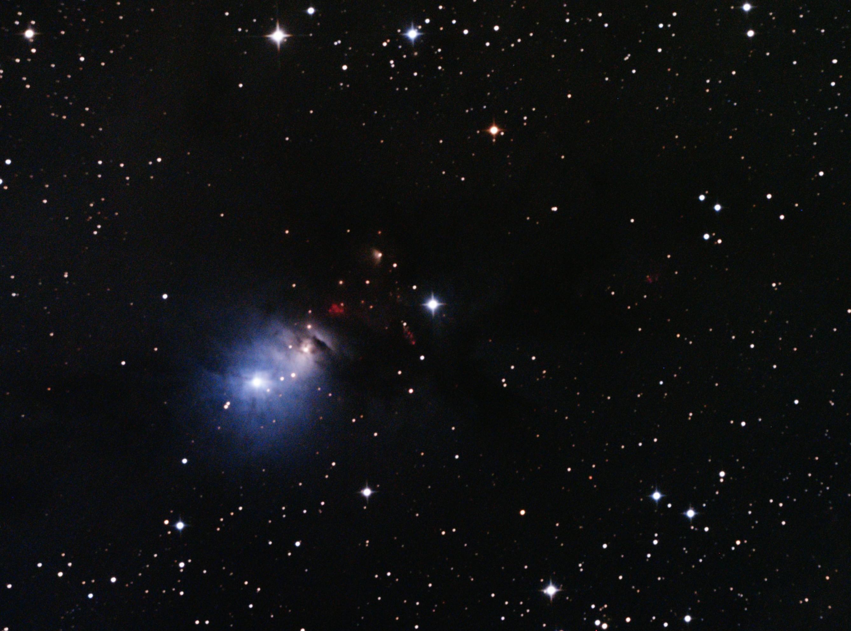 NGC133316P TRIM2 20161106