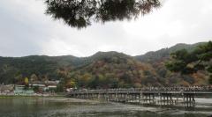 161120_kyoto1.jpg