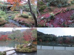 161120_kyoto2.jpg