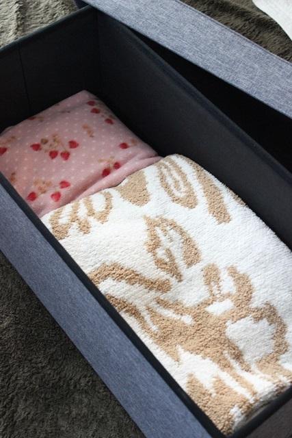 アイリスオーヤマ 収納ボックス リビング編 (5)
