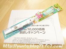 PREMIUMフッ素イオン歯ブラシ