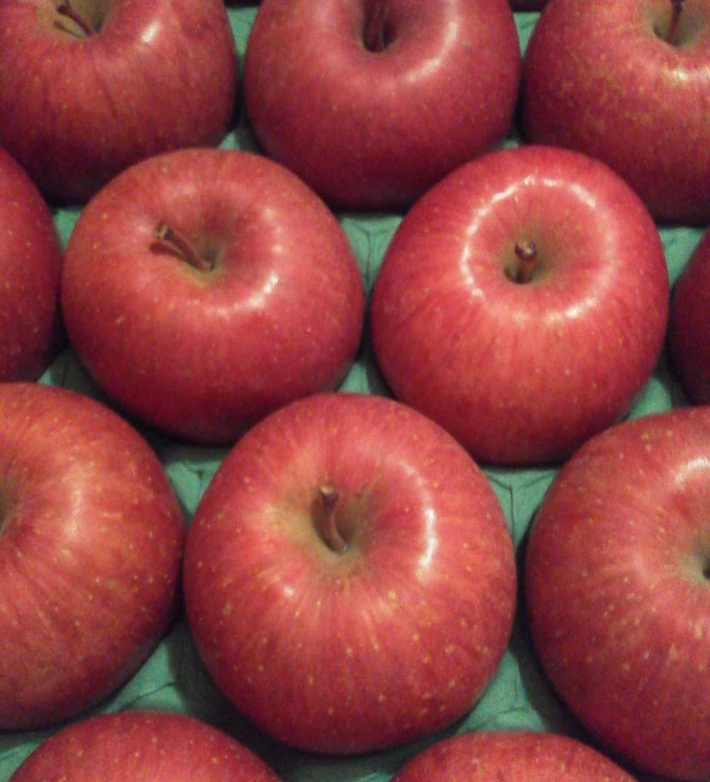 2016dec6リンゴ回転トリミングK0120244