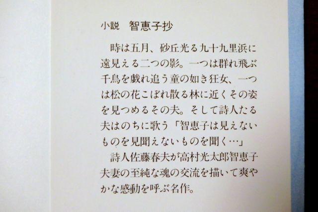 PC070124.jpg