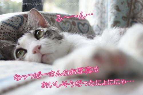 _DSC7273.jpg