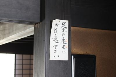 161125-8.jpg