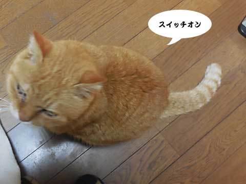 2016_12_18_3.jpg