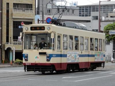 DSCN4554.jpg