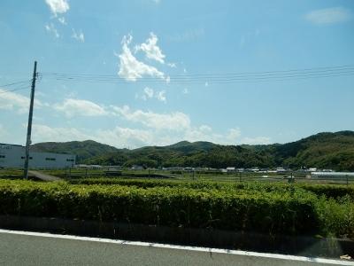 DSCN4756.jpg