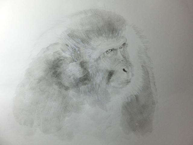 ニホンザル 水墨画