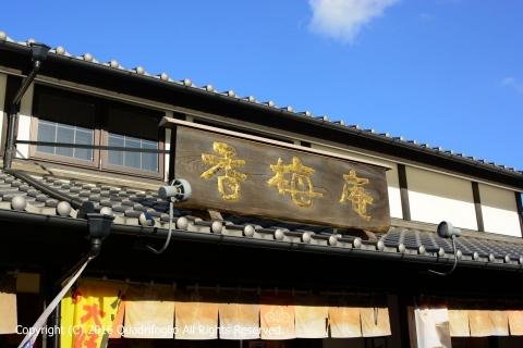 くまモン県へ
