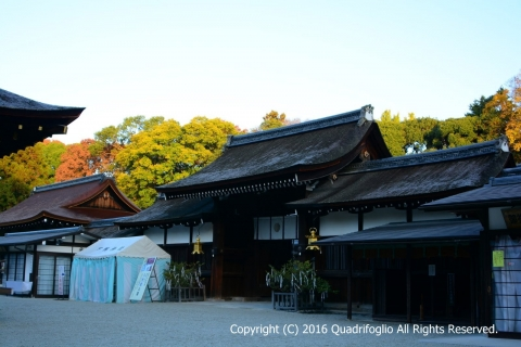 2016年 秋の京都