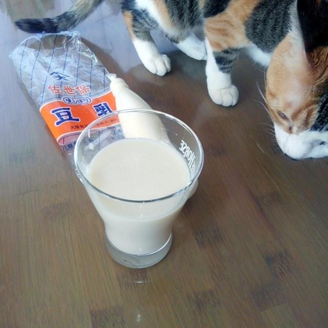 佐世保の豆乳