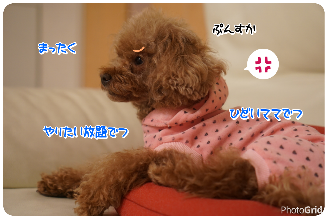 20161115202202b6a.png