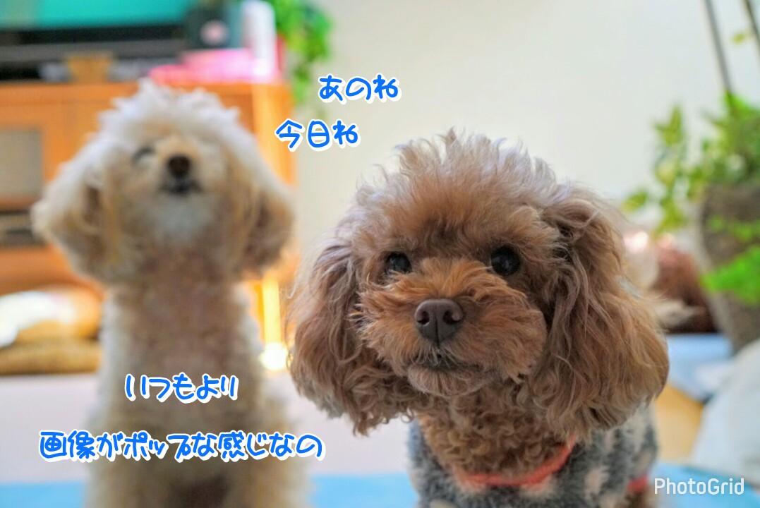 2017012822491092c.jpg