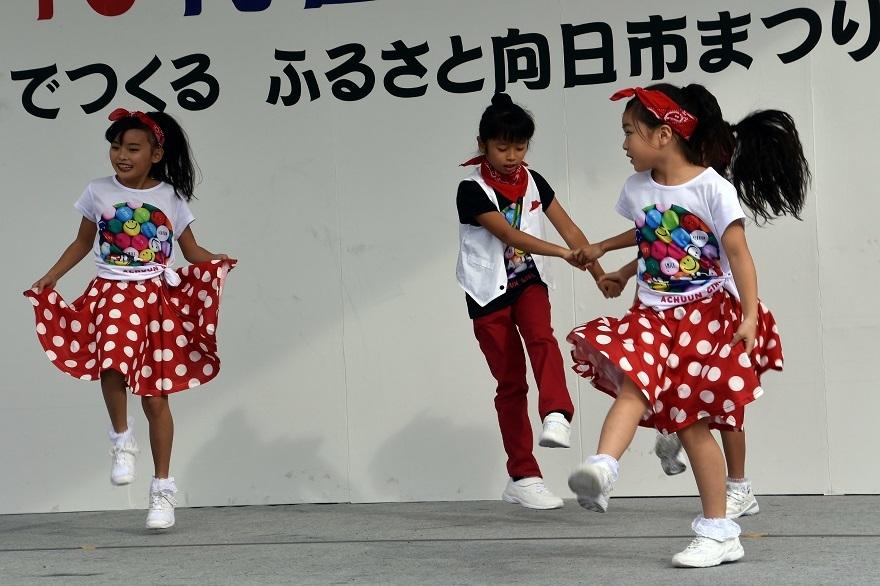 向日市・ダイ (17)