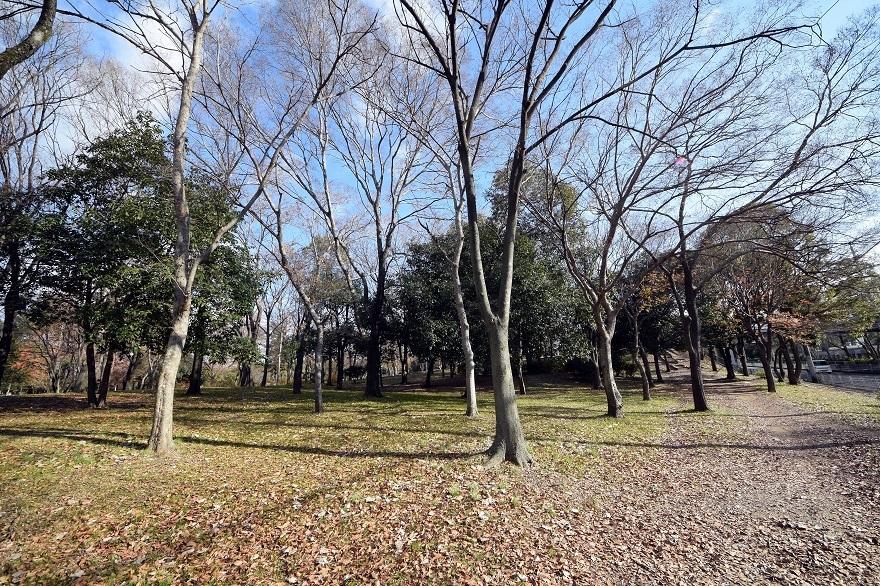 久宝寺・冬 (0)