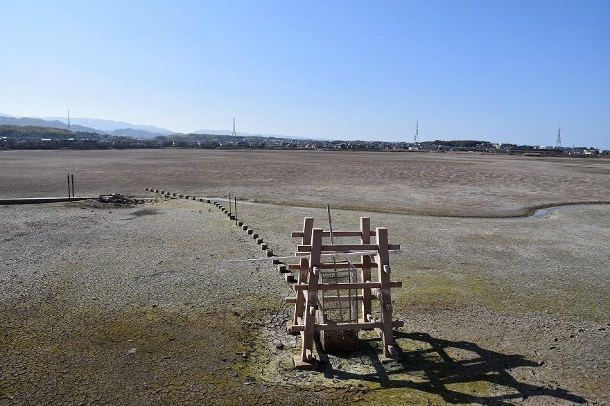 久米田池1月 (14)