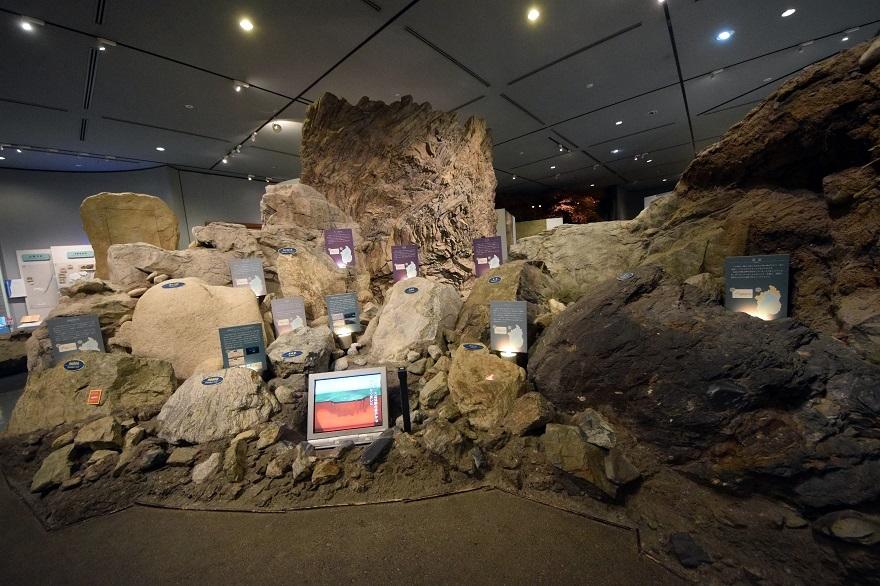 琵琶湖博物館・冬 (4)