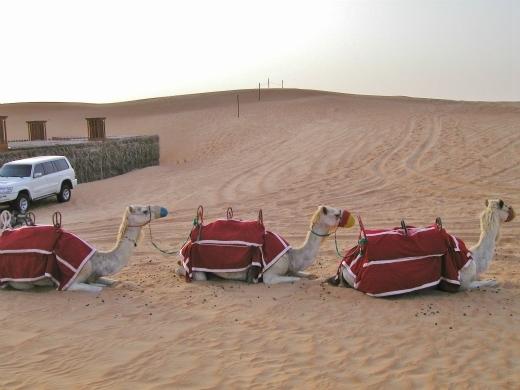 2005 DUBAI (42)
