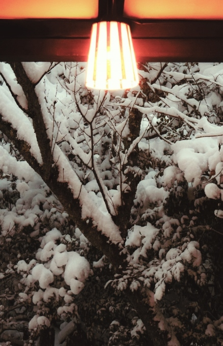 電灯の明かり