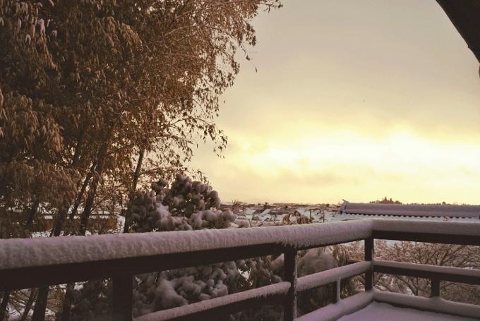翠風閣と雪