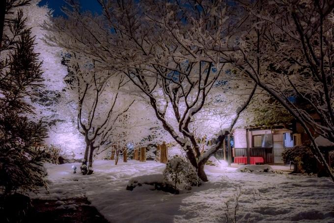 ナイター雪