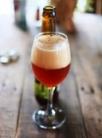 飲み物-エールビール
