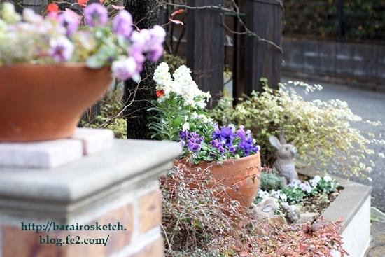 オープン花壇201612-11