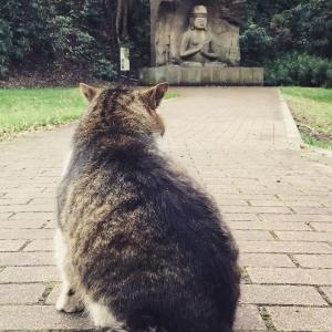 仏教文化資源研究会