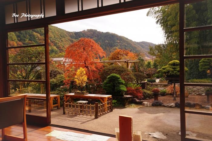 bee-高尾駒木野庭園3651