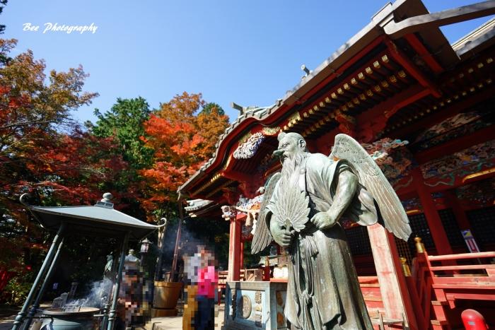 bee-高尾山3875