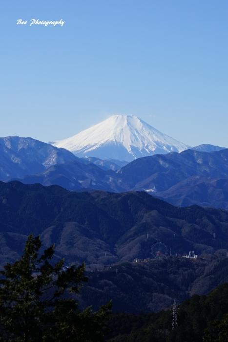 bee-高尾山-富士山7106
