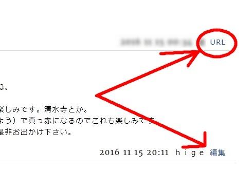 20111119003.jpg