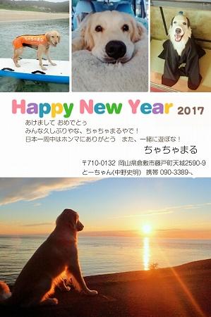 1_2017020917561375a.jpg