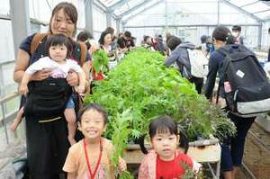 img_52165b894c福島の親子ら野菜収穫体験