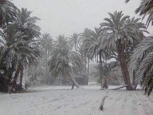 C2rw9aEW8AAmRgX12年ぶりの雪