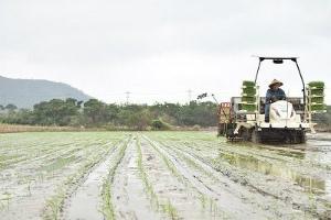 C3ZTW7wUYAADOXz超早場米の田植え始まる