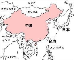 チャイニーズドリーム ネット通販 爆買い 中国 豊川 花屋 花夢