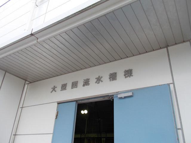 DSCN3122.jpg
