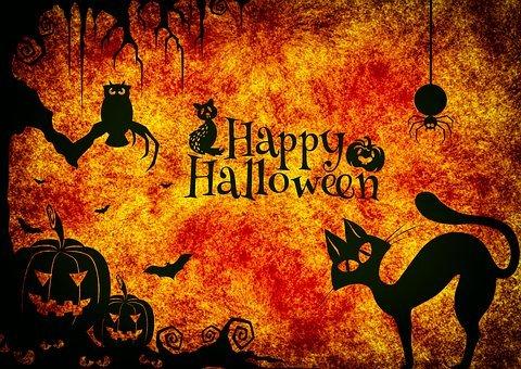 halloween-3751095__340.jpg