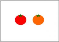トマトのフリー素材テンプレート・画像・イラスト