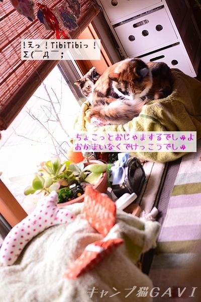 170108_4622.jpg