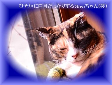 170108_4626.jpg