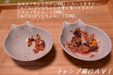 170207_5504.jpg