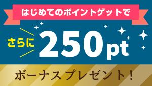 banner_250pt.jpg