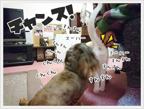 fc2_2017-01-18_03.jpg