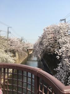 2018板橋 (20)