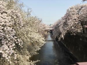 2018板橋 (41)